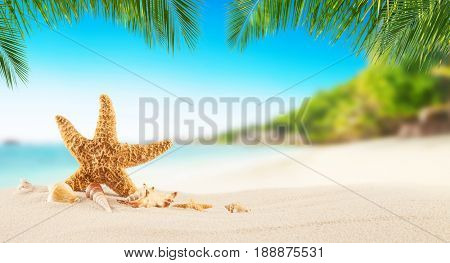 Tropical beach with sea star on sand, summer holiday background. Travel and beach vacation, free space for text or product placement.