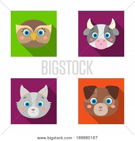 Owl, cow, wolf, dog. Animal's muzzle set collection icons in flat style vector symbol stock illustration .
