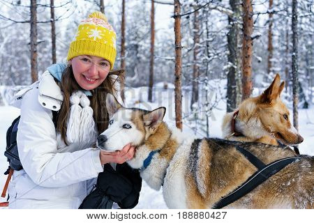 Girl And Husky Dog At Finnish Lapland