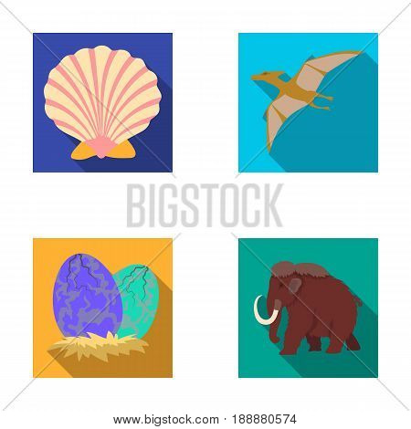Prehistoric shell, dinosaur eggs, pterodactyl, mammoth. Dinosaur and prehistoric period set collection icons in flat style vector symbol stock illustration .