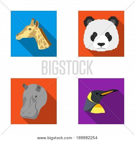 Panda, giraffe, hippopotamus, penguin, Realistic animals set collection icons in flat style vector symbol stock illustration .