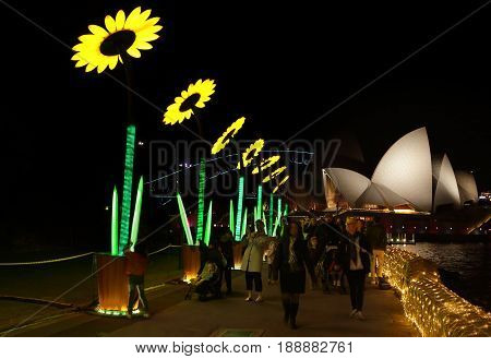 SYDNEY AUSTRALIA - MAY 29 2017; Tourists and locals walk in the Botanical Gardens with Sunflowers installation by Artists: Francesco Cappuccio (Italy) / Dutchanee Ongarjsiri (Thailand) which greets everyone with a bow. They harvest solar energy to light a