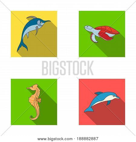 Merlin, turtle and other species.Sea animals set collection icons in flat style vector symbol stock illustration .