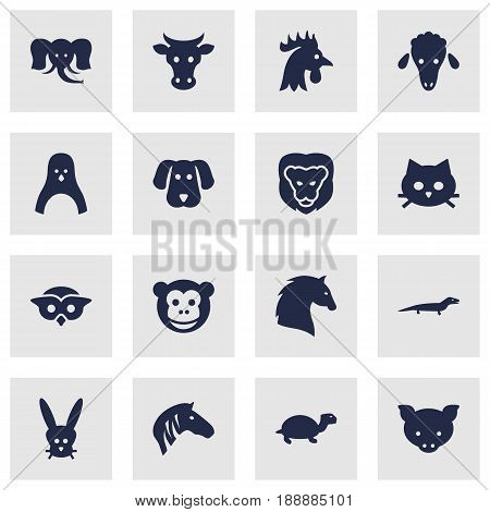 Set Of 16 Zoo Icons Set.Collection Of Steed, Hound, Trunked Animal And Other Elements.