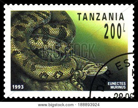 STAVROPOL RUSSIA - May 06 2017: a stamp printed by Tanzania shows boa Anaconda (Eunectes Murinus) series Reptile circa 1993