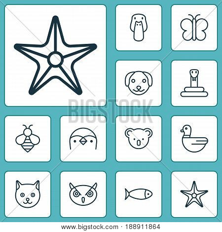 Nature Icons Set. Collection Of Puppy, Serpent, Fish And Other Elements. Also Includes Symbols Such As Serpent, Moth, Star.