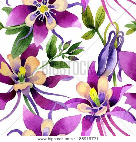 Wildflower orchid flower pattern in a watercolor style isolated. Full name of the plant: purple orchid. Aquarelle wild flower for background, texture, wrapper pattern, frame or border.