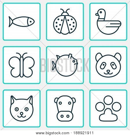 Zoology Icons Set. Collection Of Kitten, Moth, Goose And Other Elements. Also Includes Symbols Such As Mallard, Ladybug, Globefish.
