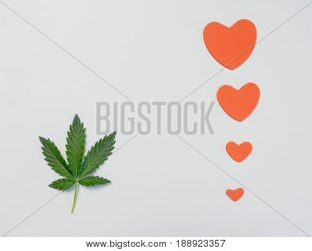 one leaf of the cannabis or marijuana on white background with hearts