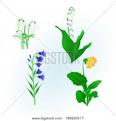 Spring flowers lily vector photo free trial bigstock spring flowers lily of the valley snowdropsbluebell campanula and primrose vintage hand draw vector botanical illustration mightylinksfo
