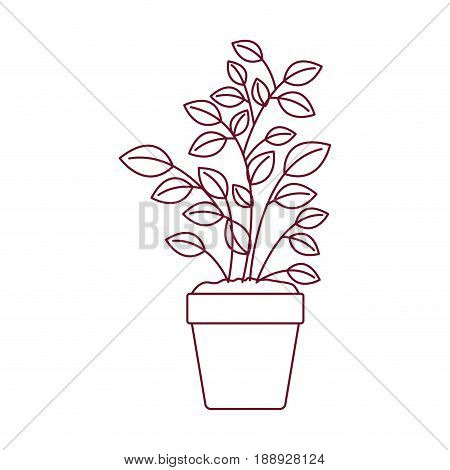 dark red line contour of plant pot vector illustration