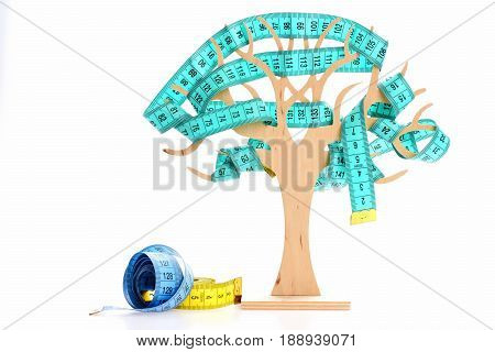 Rolls of colorful measuring tapes near decorative wooden tree intertwined with cyan measuring tape isolated on white background