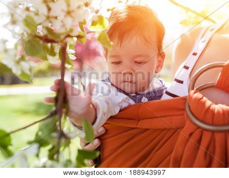 Unrecognizable young mother with her infant baby in sling outdor. Mother is carrying her child and showing nature details. Baby holds a flower in his hand
