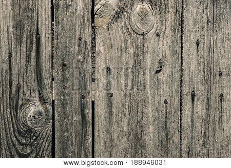 Wood texture wall with nails vertical line background neutral brown color