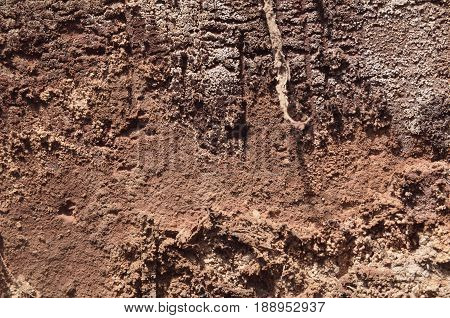 Clay texture earth daylight brown. Earth texture brown color
