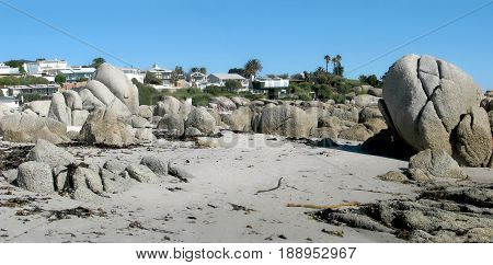 FROM CLIFTON, CAPE TOWN, SOUTH AFRICA, HUGE BOULDERS IN THE FORE GROUND WITH  HOUSES AND VEGETATION IN THE BACK GROUND 24asr
