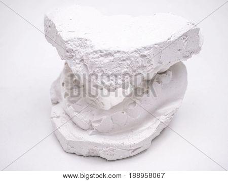 whole dentist gypsum impression of human jaw isolated on white background