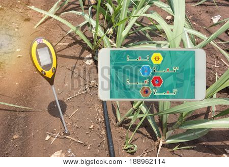 soil meter for measured 4 indicator in the soil including PH Lux meter temperature Moisture in the sugarcane field which use dripping irrigation water system
