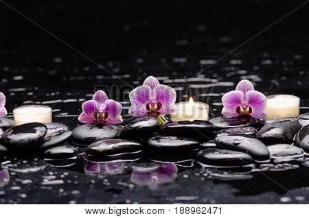 Beautiful three orchid with,candle and therapy stones