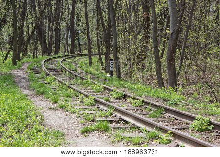abandoned curved railroad at the forest among trees. with distance sign