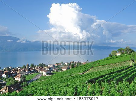 Wine Village of Cully at Lake Geneva,Vaud Canton,Switzerland