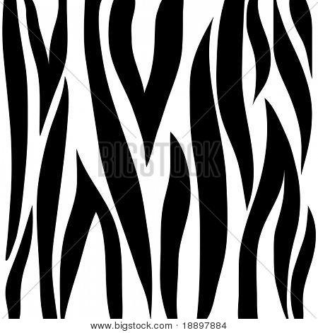 Zebra animal print pattern