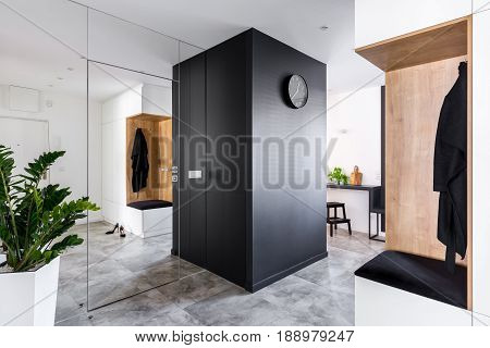 Anteroom With Modern Mirrored Wall