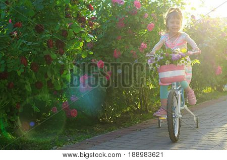 Happy Little Girl Riding A Bicycle, Portrait Photo.