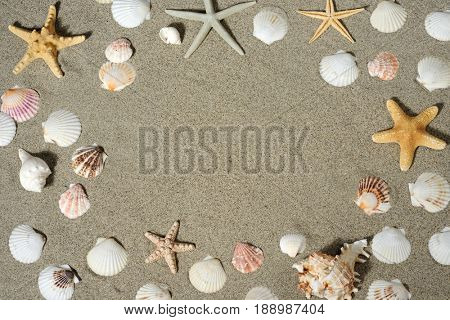 background of shell and starfishes