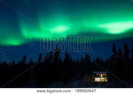 Cozy taiga home warmly illuminated under starry night sky with dancing northern lights Aurora borealis in the boreal forest of Yukon Territory Canada