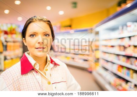 sales clerk at the supermarket, checking shelves