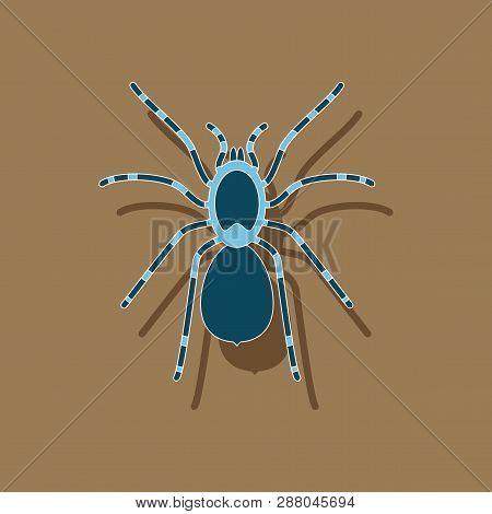 Paper Sticker On Background Of Tarantula Icon, Nature, Animal,