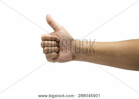 Like Sign Of Gesture Hand And Giving Thumb Up. Isolated On White Background With Clipping Path Conce