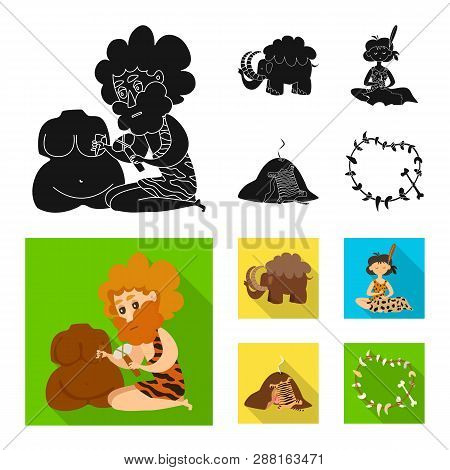 Vector design of evolution  and prehistory symbol. Collection of evolution  and development  stock vector illustration. poster