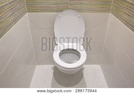 Toilet Design With Built-in Toilet. Built-in Toilet Is Made As An Installation, All The Elements, Ex