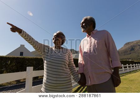Low angle view of a senior woman with senior man pointing at distance on a sunny day
