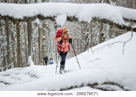 Women Ski Touring, Late Winter - Early Spring, In The Carpathian Mountains, Romania. Girls With Skis