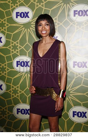 LOS ANGELES - JAN 8:  Tamara Taylor at the FOX All Star Winter TCA Party at Castle Green on January 8, 2012 in Pasadena, California.