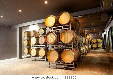 modern wine cellar with barrels