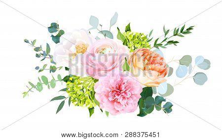 Coral Juliet Garden Rose, Pink Ranunculus, Peony, Green Hydrangea, Eucalyptus And Greenery Vector De