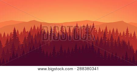 Pine Forest At Dusk Orange Landscape Background