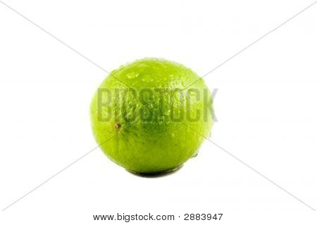 A Lime Fruit With Water Drops Isolated On White Background