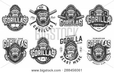 Vintage sport teams logotypes set with ferocious gorilla mascots of football hockey baseball gaming clubs in monochrome style isolated vector illustration poster