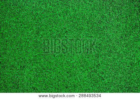 Green Artificial Grass Texture Top View Background.