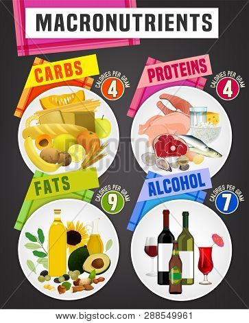 Main Food Groups - Macronutrients. Carbohydrates, Fats, Proteins, Alcohol. Dieting, Healthcare And E
