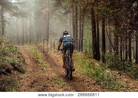 Cyclist On Mountain Bike Riding Uphill On Forest Trail In Fog