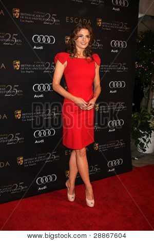 LOS ANGELES - JAN 14:  Stana Katic arrives at  the BAFTA Award Season Tea Party 2012 at Four Seaons Hotel on January 14, 2012 in Beverly Hills, CA
