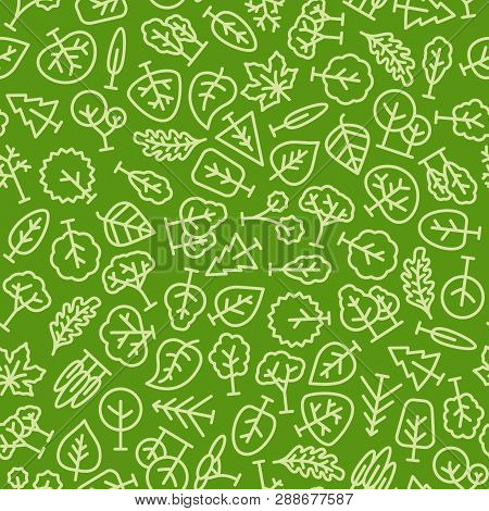 Vector Trees And Leafs Pattern Line Green Color For Natural Product Store, Garden, Nature Cosmetics,