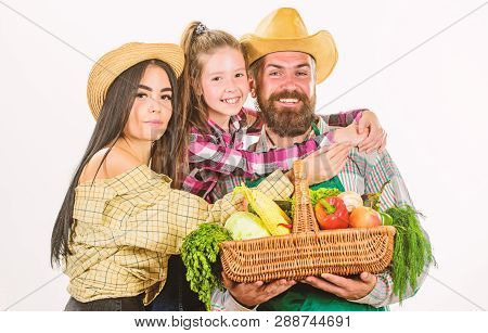Family Farmers Hug Hold Basket Fall Harvest. Family Gardeners Basket Harvest Isolated White Backgrou