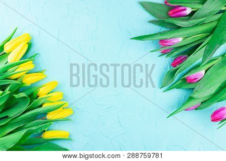 Yellow And Pink Tulips On A Blue Background With Concrete Copyspace